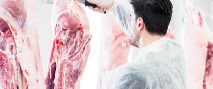 L'ANACT publie son rapport sur l'amélioration des conditions de travail dans les abattoirs