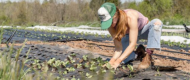 La MSA se mobilise pour la santé des femmes du secteur agricole