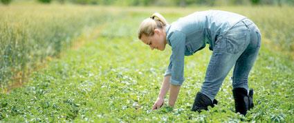 Un guide pour évaluer la pénibilité des métiers de l'agriculture