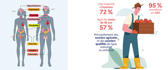 « 55 % des entreprises utilisent soit des perturbateurs endocriniens, soit des nanomatériaux, soit les deux »