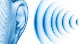 Mes oreilles, le secret de ma forme au travail et pas que…