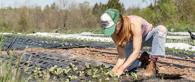 DREETS, DRAAF et MSA s'allient pour la SST dans l'enseignement agricole