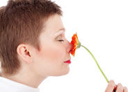Impact des odeurs dans la Qualité de Vie au Travail