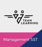 TEAM LEARNING